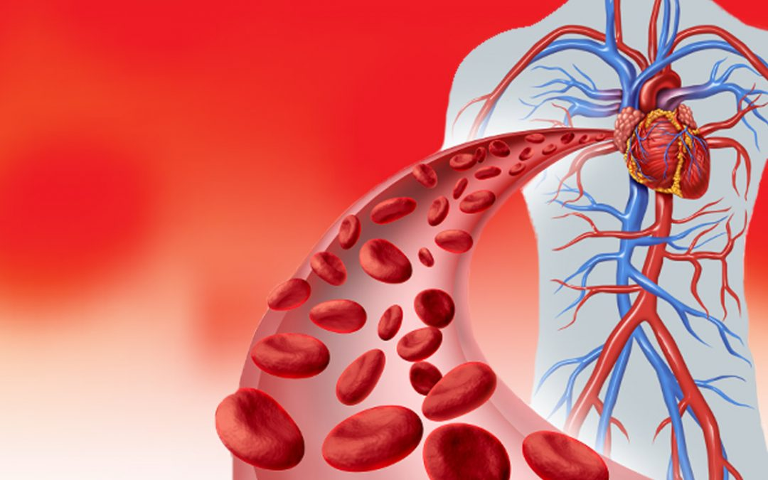 Why you need a good blood flow